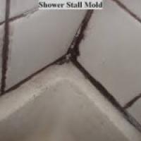 Mold E1420652401419